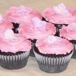 00 - Cupcakes