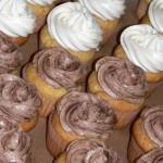 00 b Vanilla and Chocolate Cupcakes